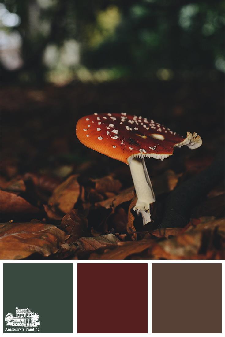 Color Palette // Woodland Finds SW2847 Roycroft Bottle Green, SW2802 Rookwood Red, SW6076 Turkish Coffee