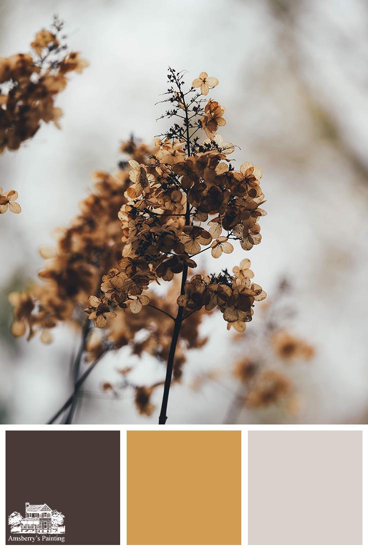 Color Palette // Fall Floral SW6006 Black Bean, SW6383 Golden Rule, SW7634 Pediment