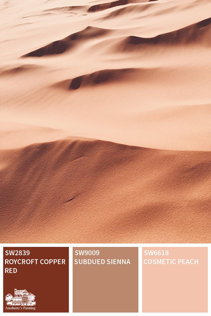 desert tour color palette collection amsberry s painting